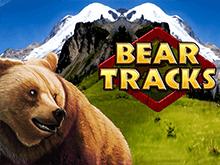 Следы Медведя без смс