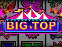 Купол Цирка в казино